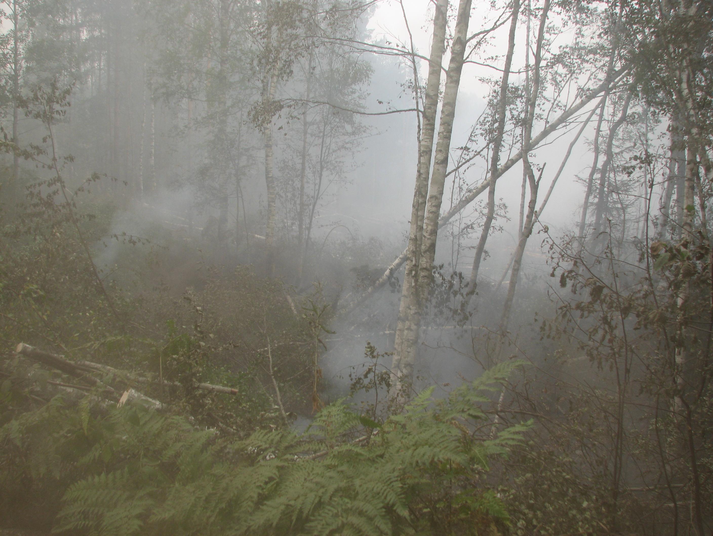 О ситуации с природными пожарами на территории Ивановской области
