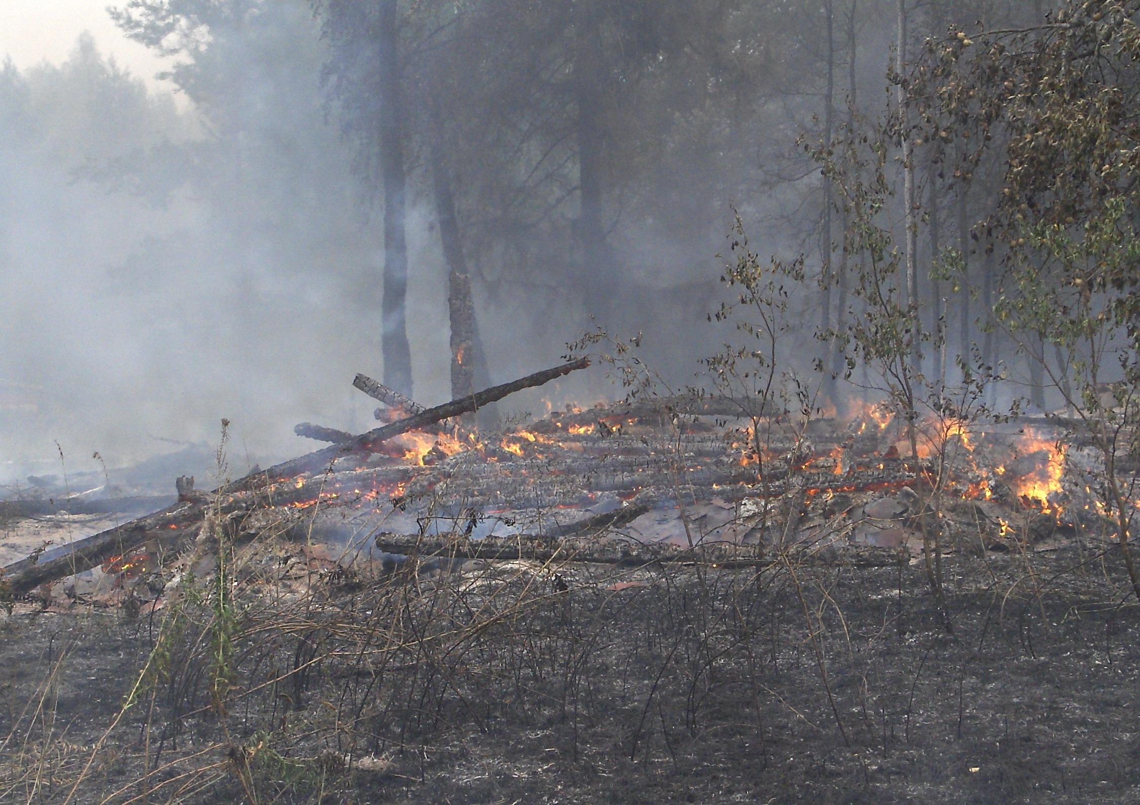 Лесопожарная обстановка в Ивановской области по состоянию на  17.00 час. 19 августа 2010 года