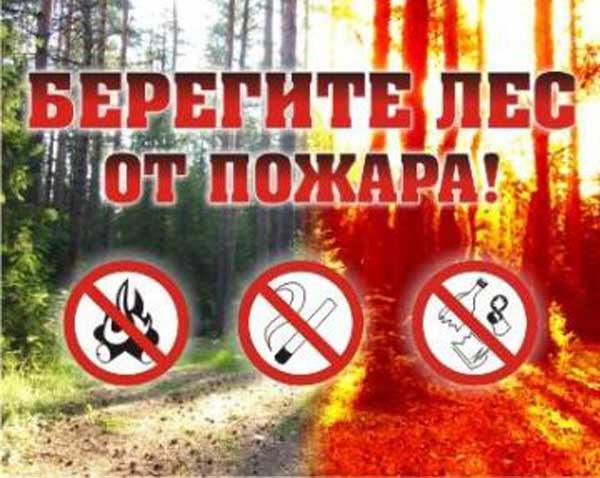 Правила пожарной безопасности на природе