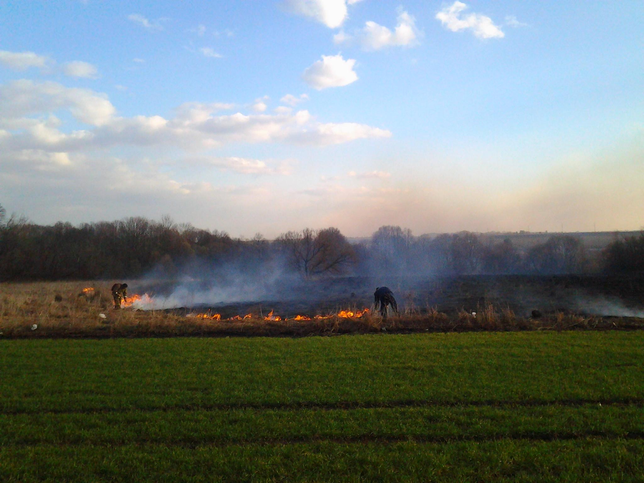 Орловские пожарные и спасатели совершили 200 выездов за выходные – в основном на горение сухой травы!