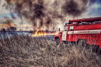 В текущем году за совершение правонарушений, связанных с нарушением порядка выжигания сухой травянистой растительности, стерни, пожнивных остатков, сжиганием мусора, а также разведением костров составлено 53 протокола об административных правонарушениях