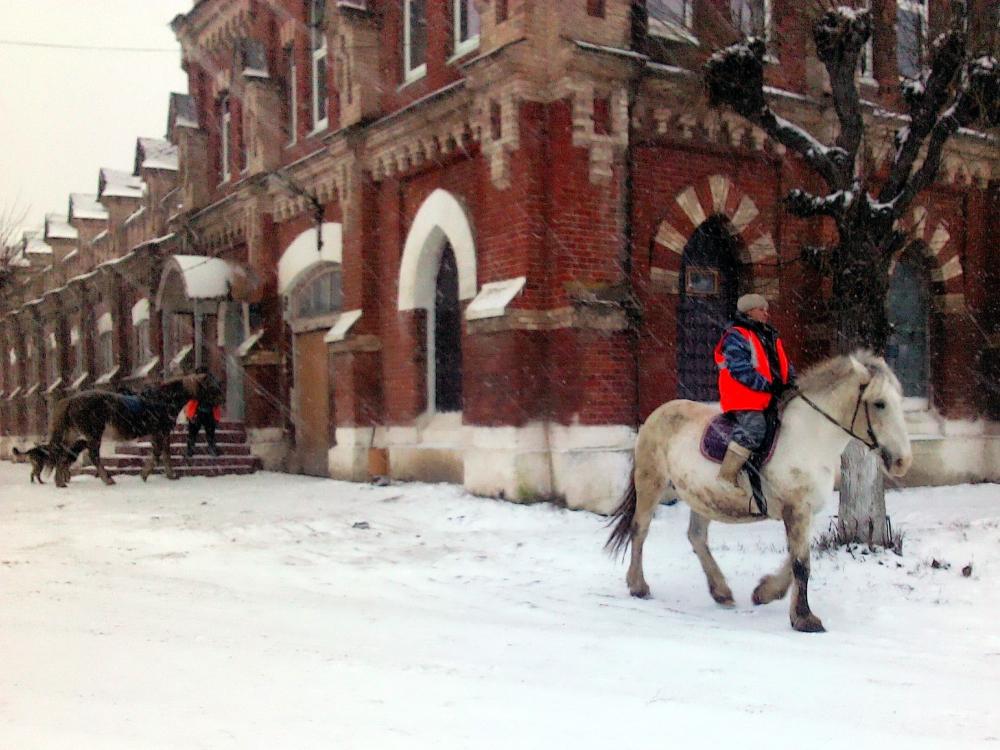 Патрульрование конных добровольцев