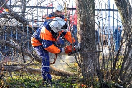 Рязанские спасатели опилили деревья у Шереметьево-Песочинского детского дома