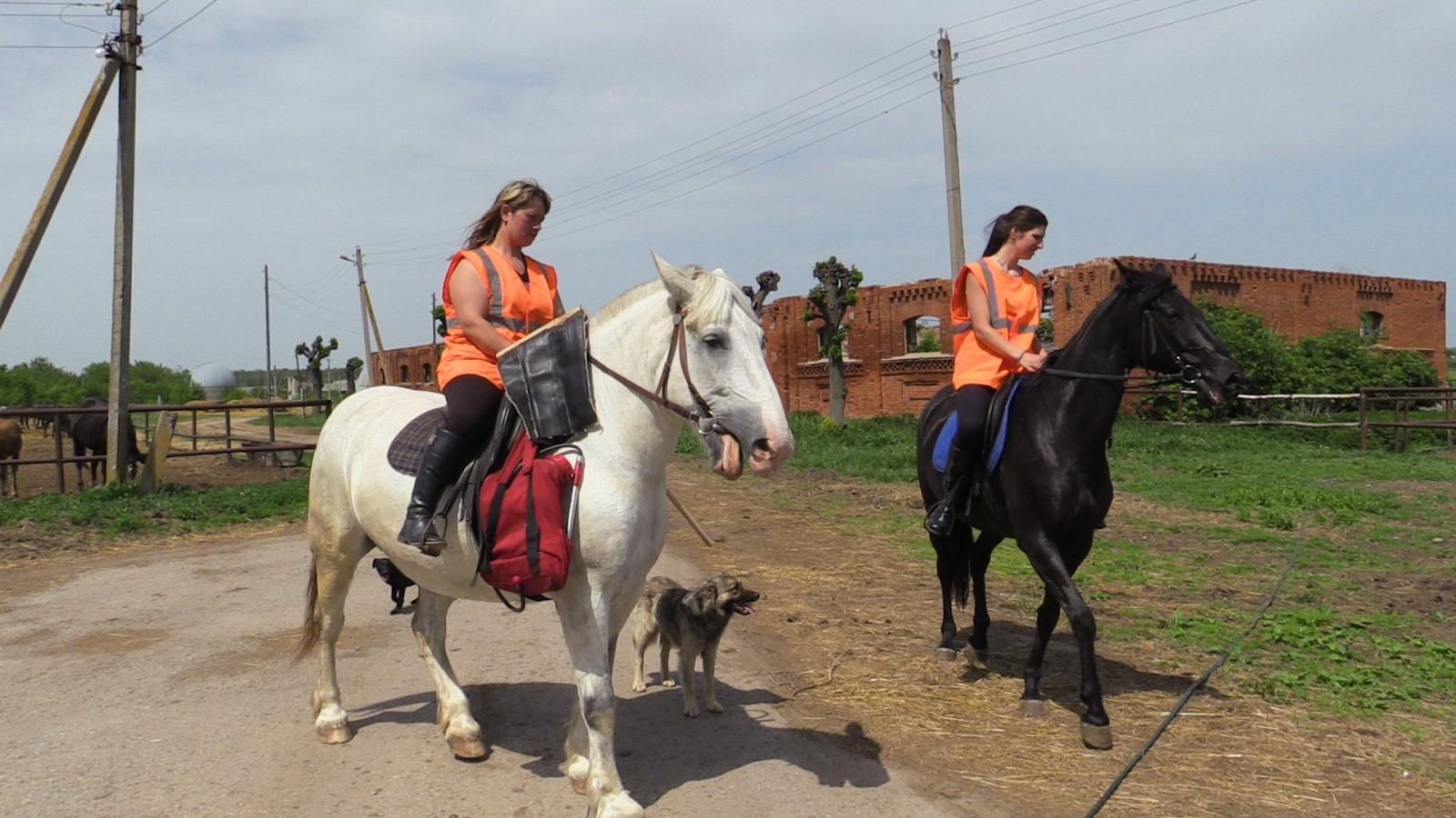 Конные добровольцы в Старожилово