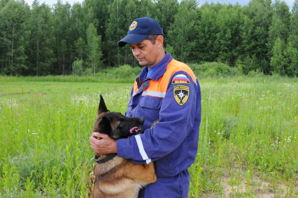 Интервью с начальником кинологической группы аварийно-спасательной службы Рязанской области Романом Хаткевичем по вопросу безопасного поведения в лесу.