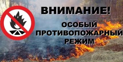 Внимание: на территории Рязанской области продолжает действовать особый противопожарный режим
