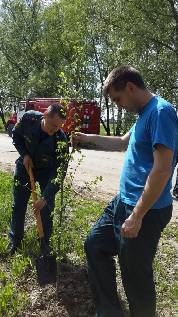 Участие пожарных в Дне посадки леса