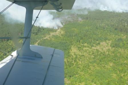 Ликвидация природных пожаров на територии Рязанской области в 2010 году
