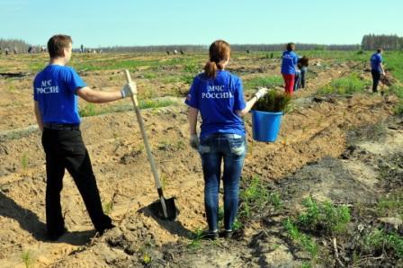 Участие сотрудников МЧС во Всероссийском дне посадки леса