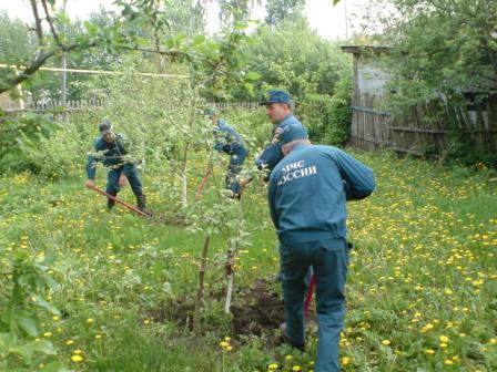 Добровольные и профессиональные пожарные Рязанской области посадили деревья и разбили клумбы