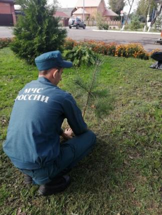 (26.09.19) Огнеборцы города Рославля присоединились ко всероссийской экологической акции «Сохраним лес»