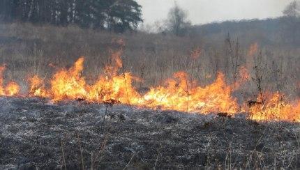 Рискам весенне-летнего пожароопасного периода особое внимание (25.03.2017)