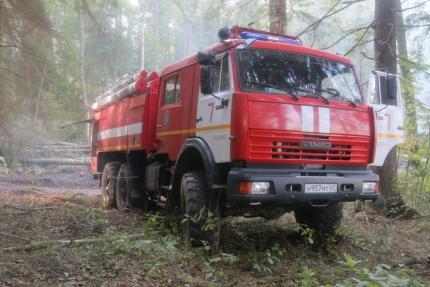 (18.06.2018) Предупреждение лесных пожаров - основная цель оперативных групп