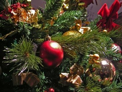 Профилактическая операция «Новый год»