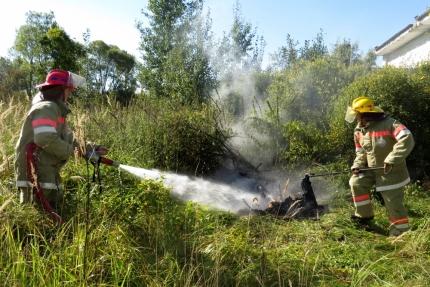 (19.06.2018) Работа подразделений добровольной пожарной охраны на территории Смоленской области
