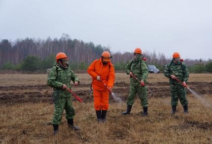 Сегодня в рейд выйдут 55 оперативных патрульных групп