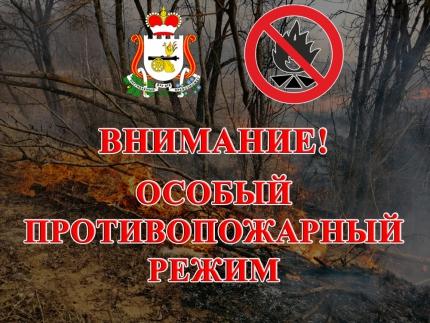 (22.04.19) На территории Смоленской области введен особый противопожарный режим