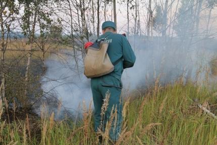 Работа по недопущению природных пожаров