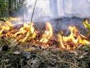 Соблюдайте элементарные правила пожарной безопасности в летний пожароопасный период
