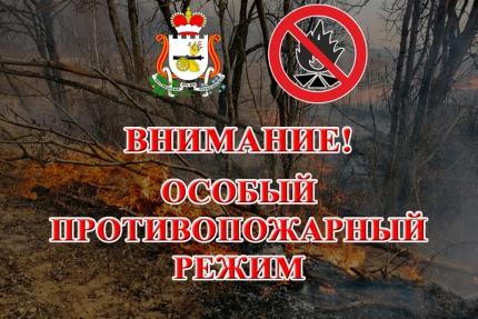 (19.05.19) В области продолжает действовать особый противопожарный режим