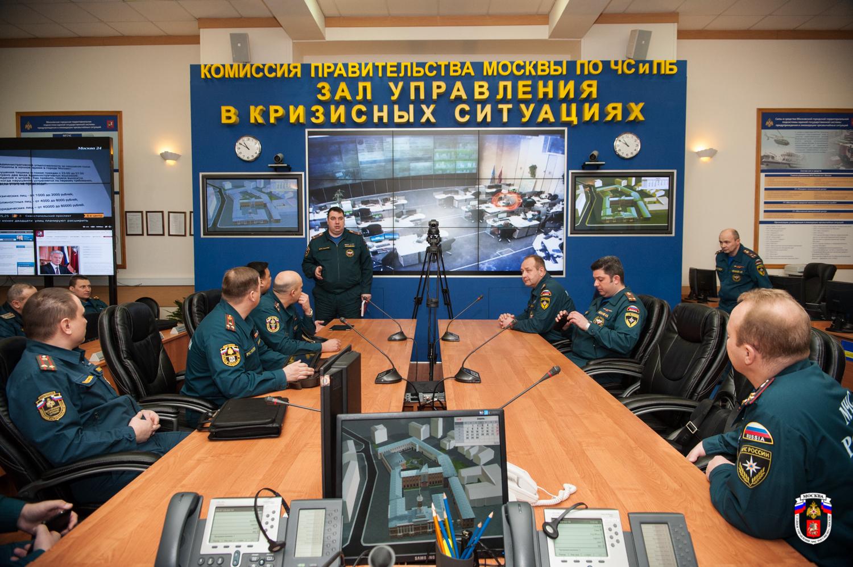цукс московской области фото комнатные