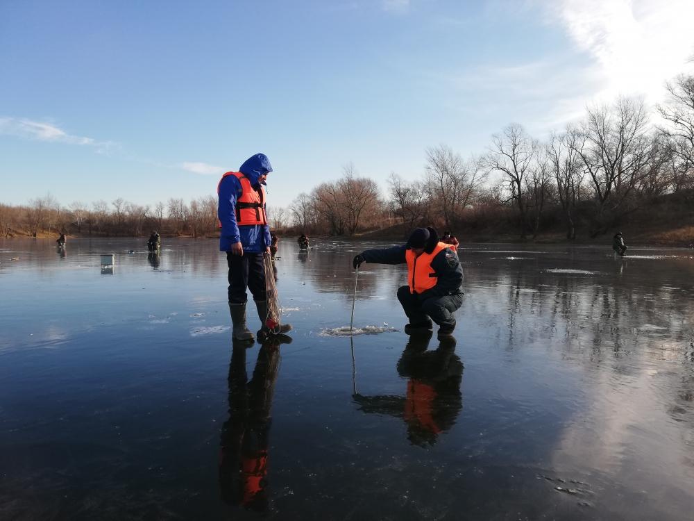 Проверьте свои знания поведения на льду