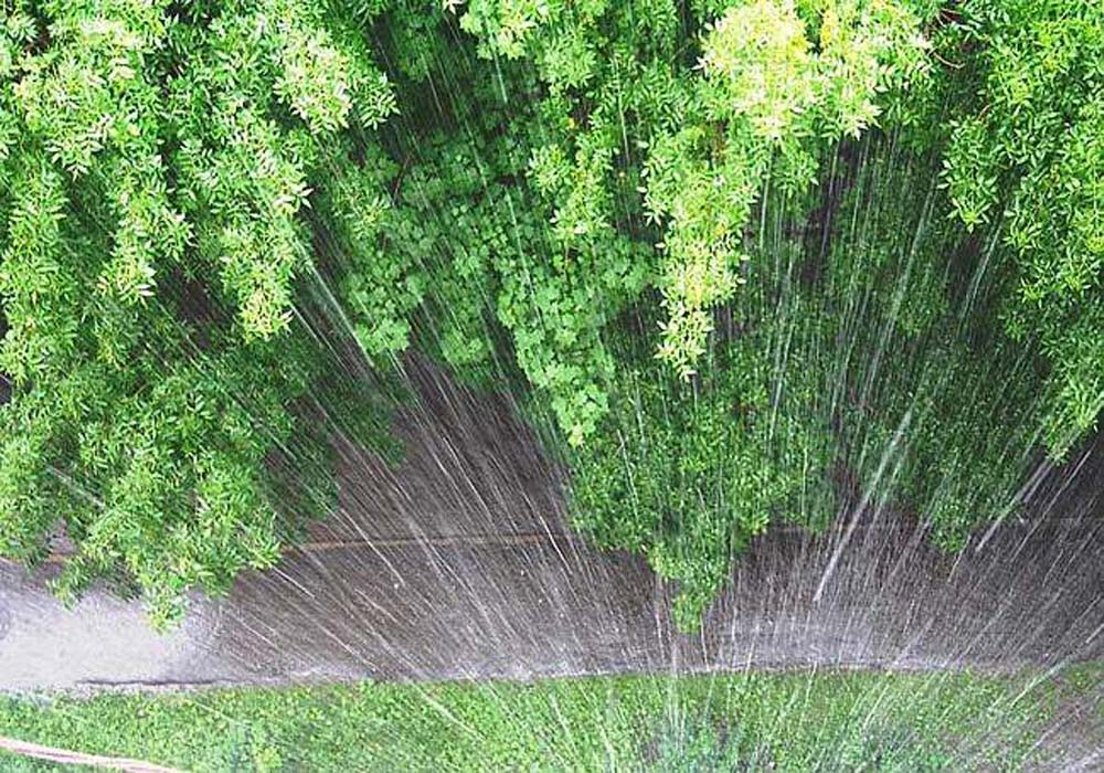 Экстренное предупреждение по сильным дождям на 16 мая