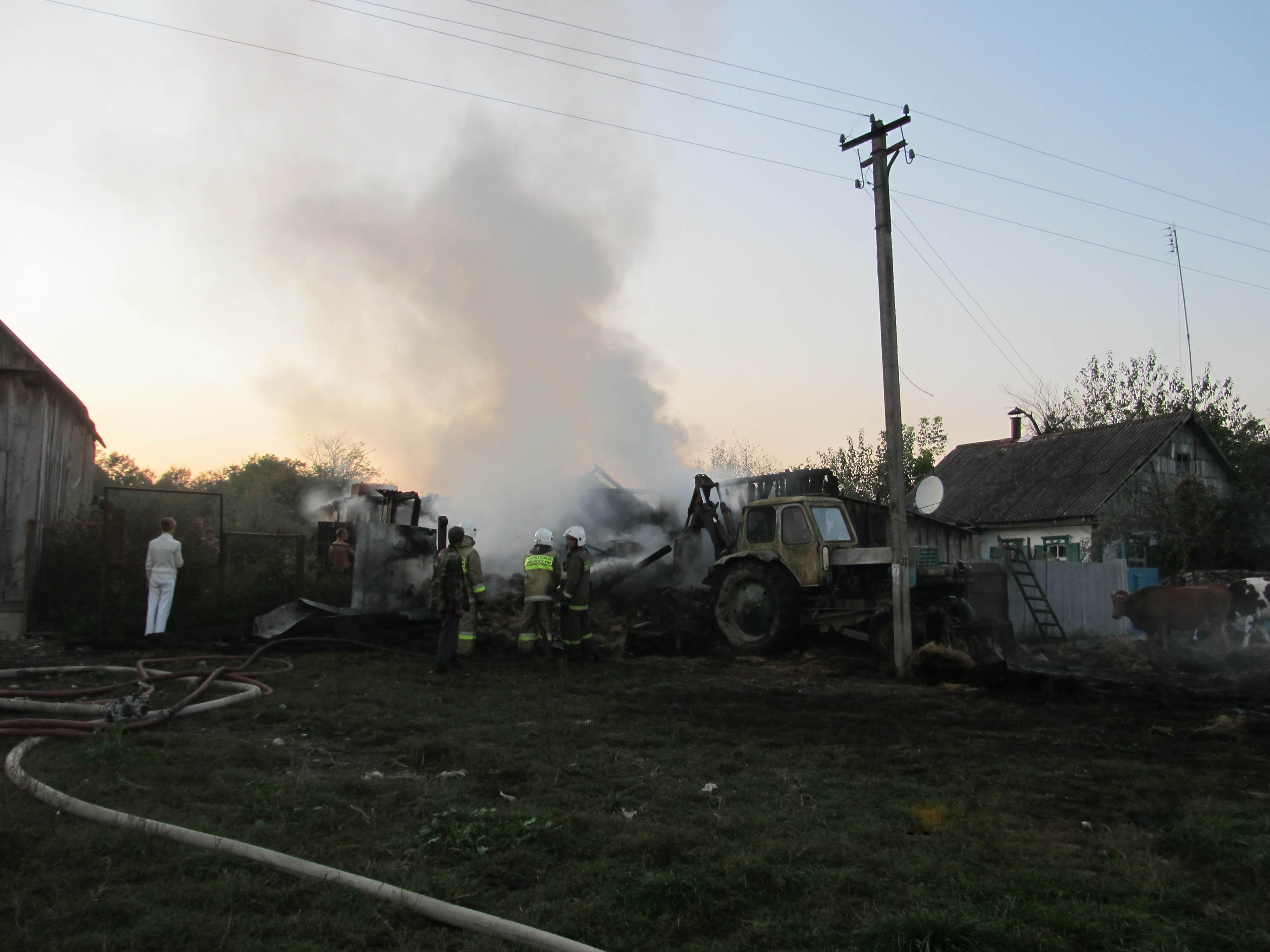 Черниговские добровольцы потушили сенник
