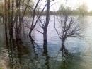 Высокие уровни воды могут привести к возникновнию ЧС