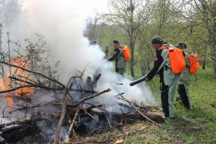 С начала года надзорные органы МЧС России установили свыше 12 тысяч неконтролируемых палов сухой растительности