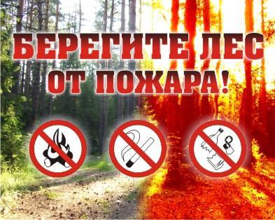 ПАМЯТКА по профилактике лесных и торфяных пожаров