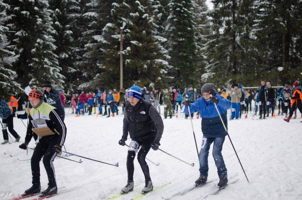 Соревнования Школа безопасности - 2017 (зимний период)