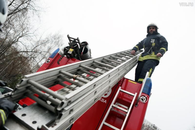 8 апреля  отмечает свой День рождения пожарная лестница