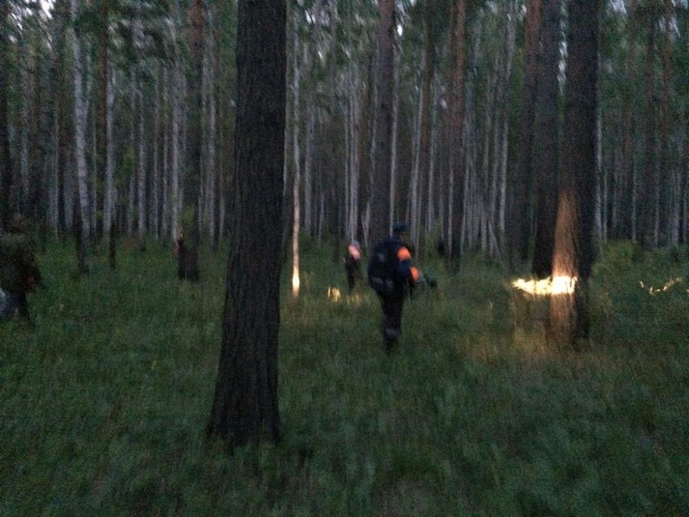 10-13.06.2017 Работы по поиску потерявшегося ребёнка в Рефтинском городском округе