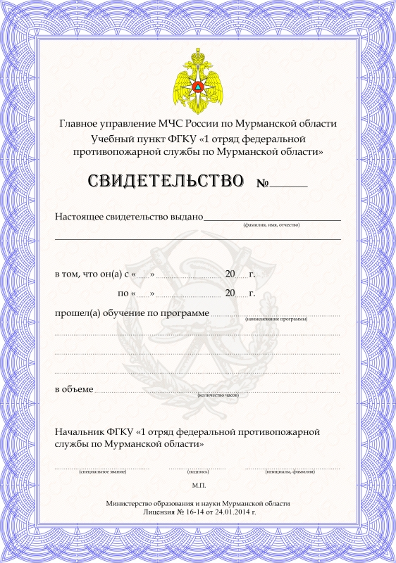 Образец выдаваемого документа