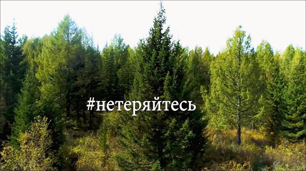 Как не заблудиться в лесу (СОЦИАЛЬНЫЙ РОЛИК).