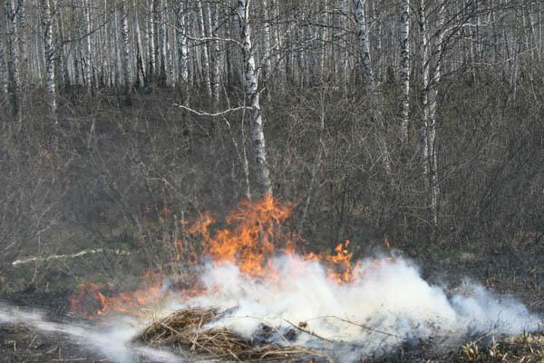 Совместный рейд сотрудников ГПН с представителями СМИ по садово-дачным обществам в период активизации ландшафтных пожаров
