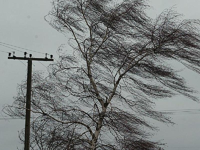Экстренное предупреждение! Прогнозируется усиление ветра.
