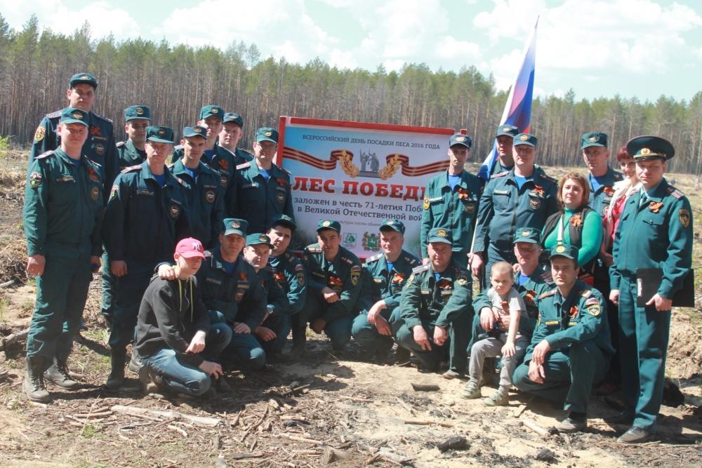Акция «Лес Победы», 21 мая 2016 года