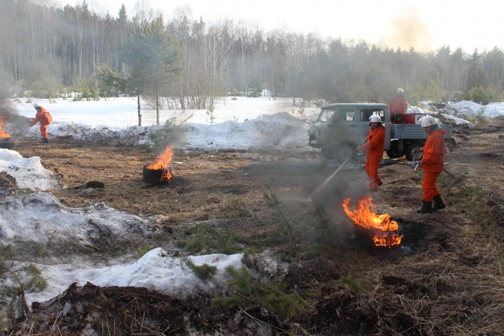 Рабочая группа МЧС России оценила готовность Томской области к прохождению паводкового и лесопожарного периодов