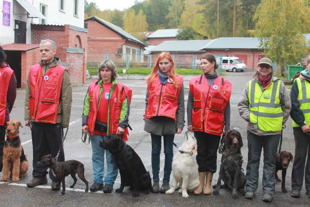 Открытие учебно-тренировочных сборов кинологов МЧС России Сибирского региона