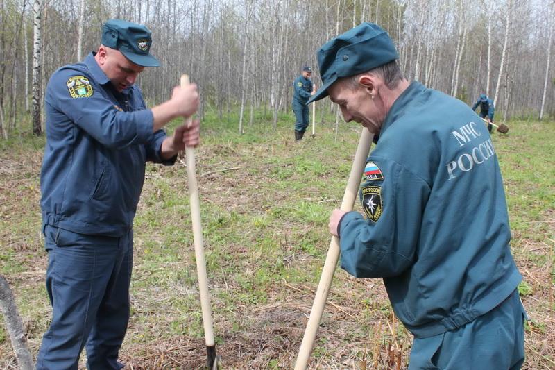 Всероссийская экологическая акция по посадке деревьев