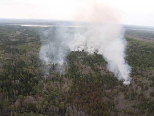 Авиаразведка лесопожарной обстановки, ликвидация лесных пожаров