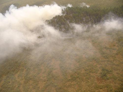 Лесные пожары на севере Томской области