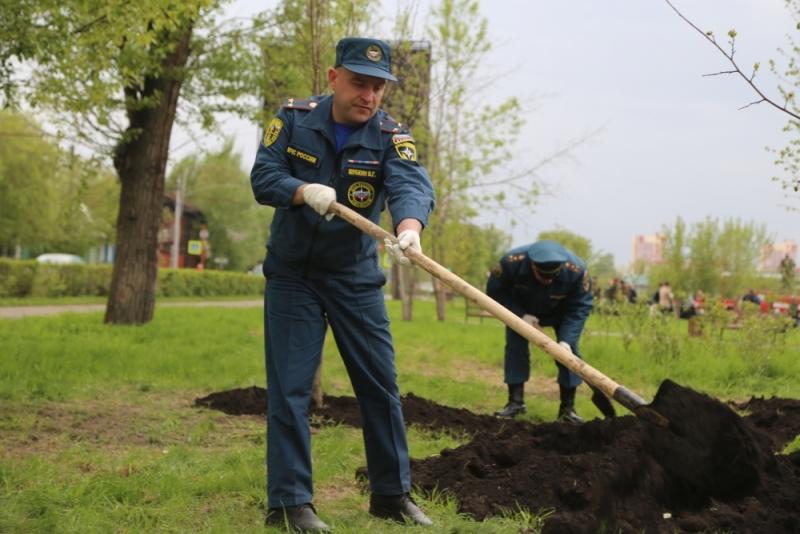Сотрудники МЧС приняли участие во Всероссийском дне посадки леса