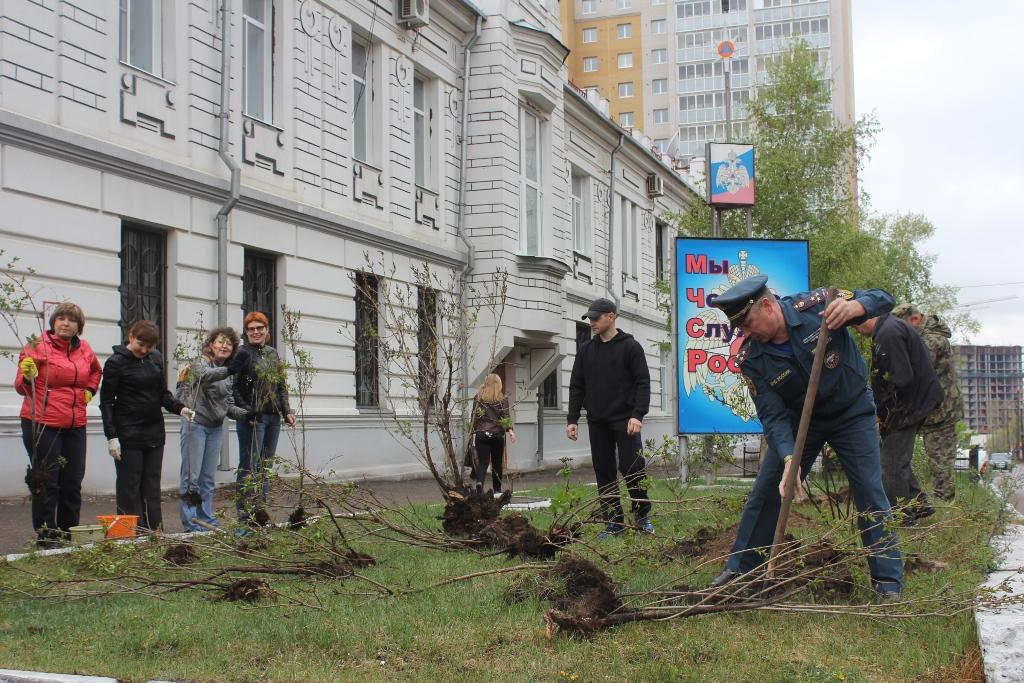"Акция ""Посади дерево"""