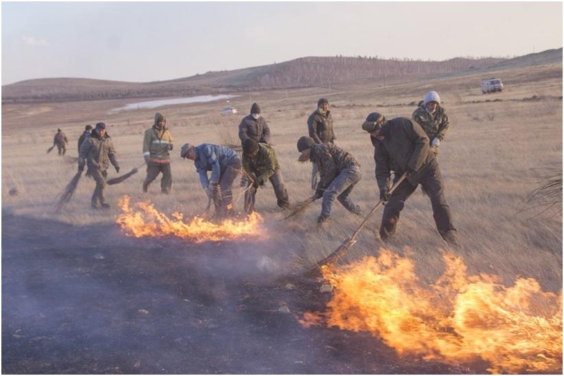 Если Вы оказались в зоне ландшафтного пожара