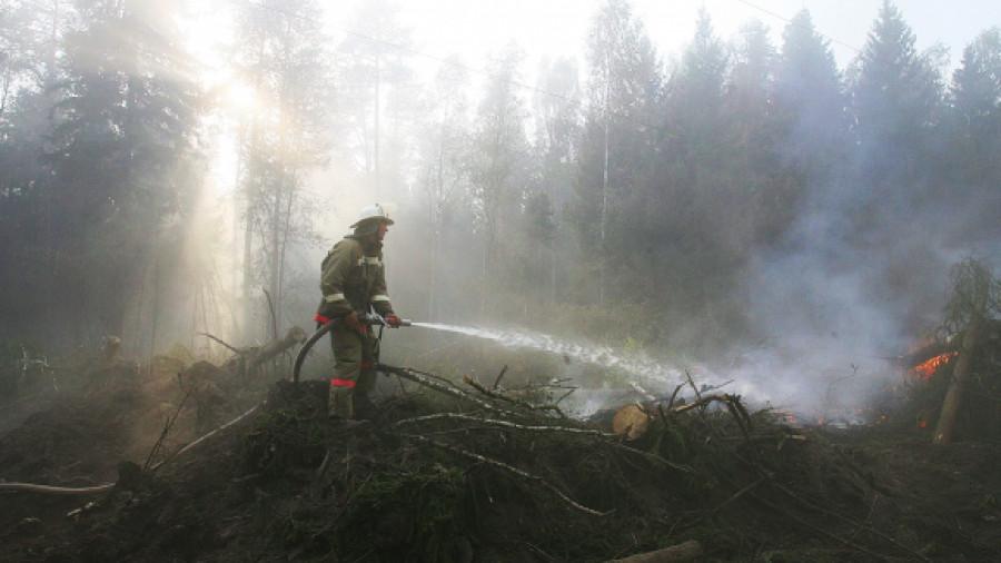 Разведение открытого огня в условиях сильного ветра может привести к трагедии
