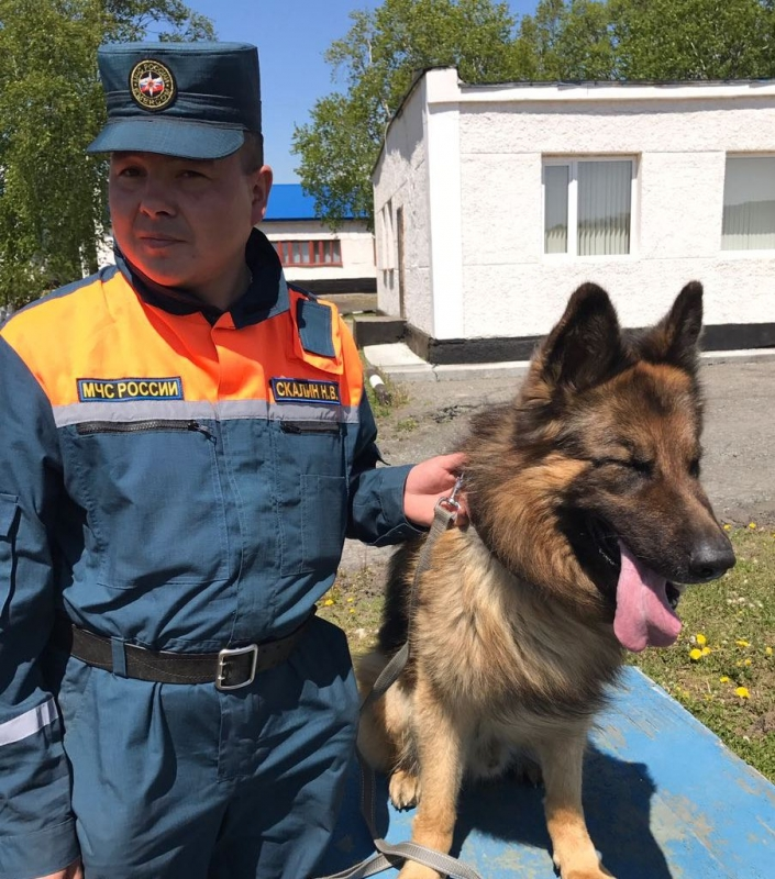 Николай Скалин: собака мимо попавшего в беду человека не пройдет