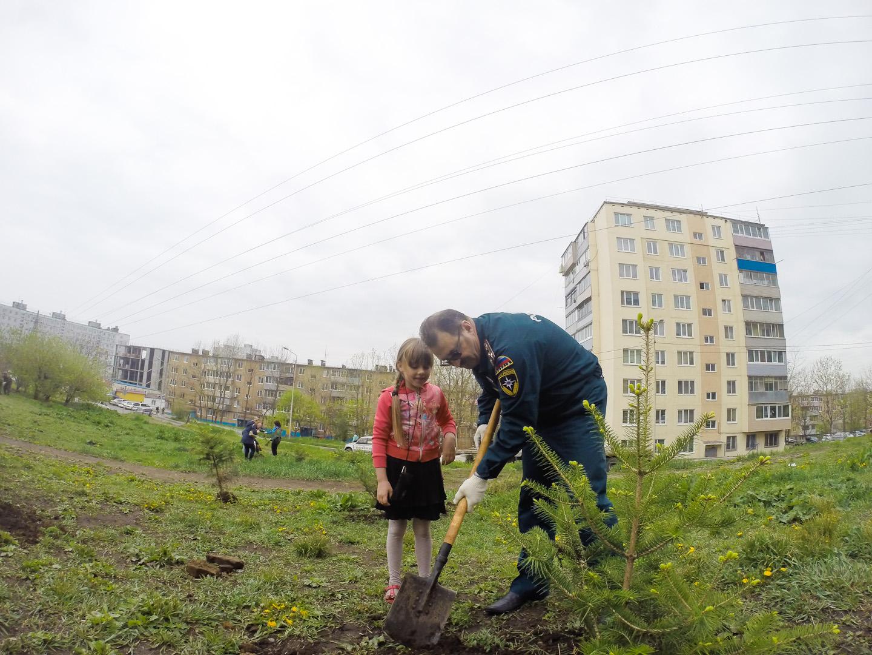 приняли участие в акции посади дерево рециклинга знание устройства